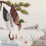 Duck in Flight 9054